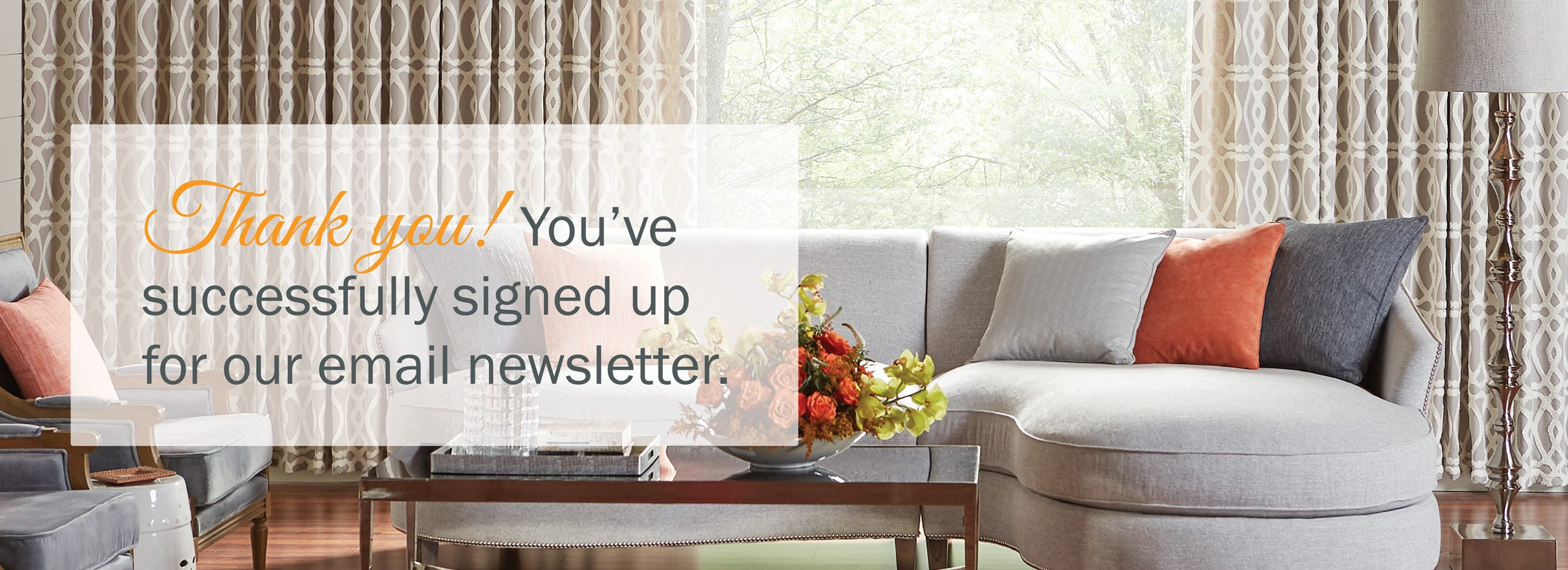 Thank you! You've successfully signed up for our email newsletter.